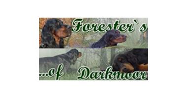 Partner Foresters of Darkmoor Logo
