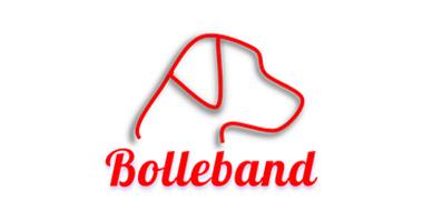 Partner Bolleband Logo